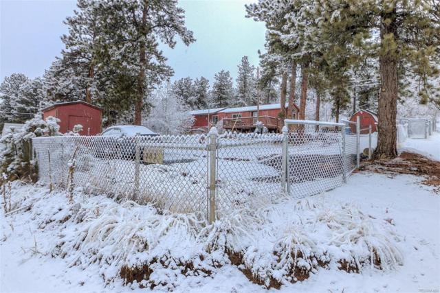 379 Neal Road, Bailey, CO 80421 (#7499427) :: Bring Home Denver with Keller Williams Downtown Realty LLC