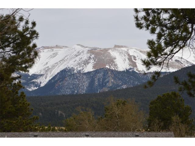 106 Stephanie Place, Divide, CO 80814 (#7500389) :: The Peak Properties Group