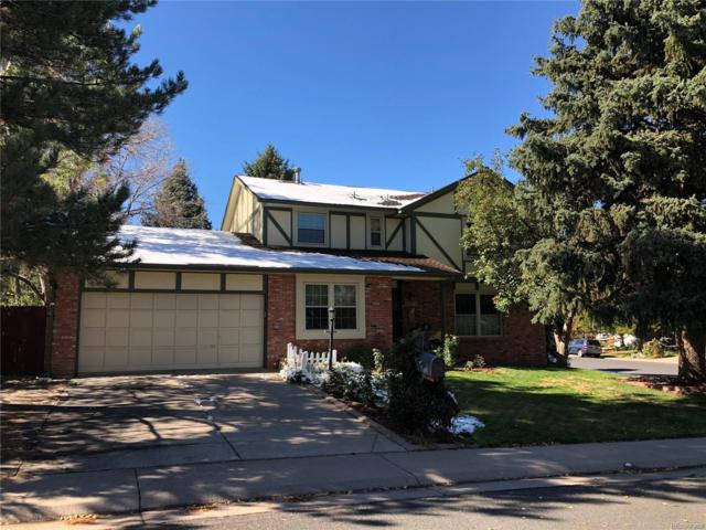 11272 Quivas Loop, Westminster, CO 80234 (#7501446) :: The Healey Group