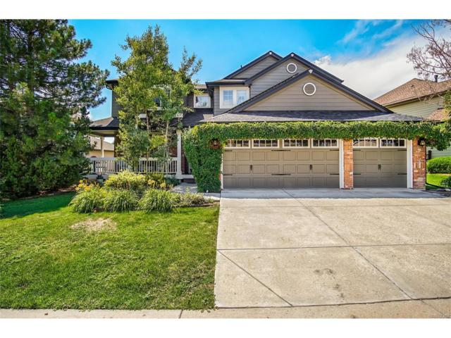 9241 Millcreek Court, Highlands Ranch, CO 80126 (#7502102) :: The Peak Properties Group