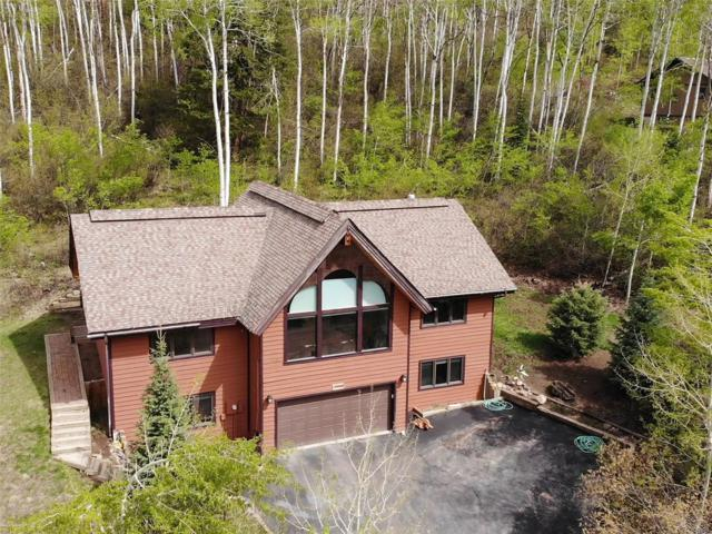 22660 Snowbird Trail, Oak Creek, CO 80467 (#7503051) :: The HomeSmiths Team - Keller Williams