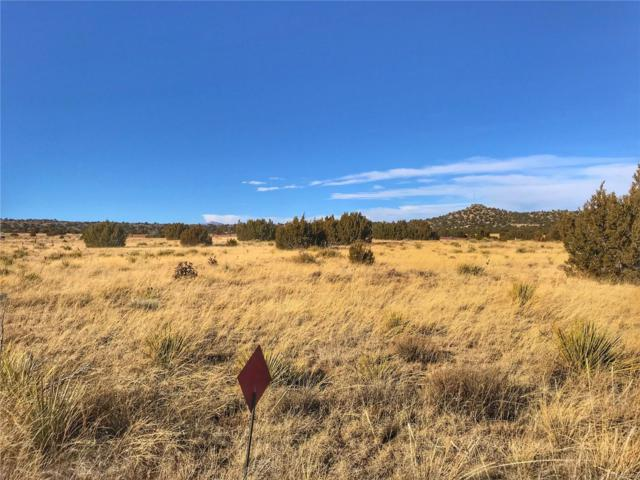 Indian Head Trail, Walsenburg, CO 81089 (MLS #7504714) :: 8z Real Estate
