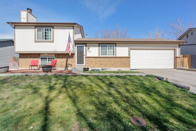 10690 Ross Street, Westminster, CO 80021 (#7512243) :: The DeGrood Team