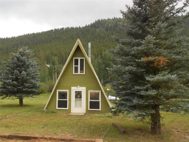 180 Bishop Road, Bailey, CO 80421 (#7512316) :: The Pete Cook Home Group