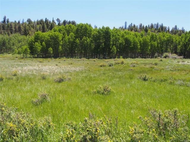 298 Summit Loop, Lake George, CO 80827 (MLS #7514232) :: 8z Real Estate