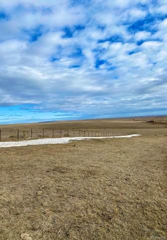rural Hwy 86, Agate, CO 80101 (#7514313) :: The Gilbert Group