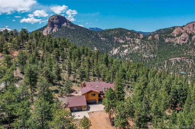 430 Gatewood Court, Pine, CO 80470 (#7515081) :: The DeGrood Team