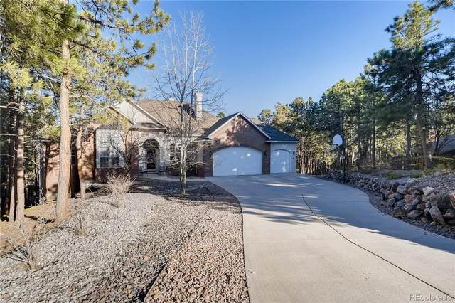 205 Blue Garter Way, Monument, CO 80132 (MLS #7518870) :: 8z Real Estate