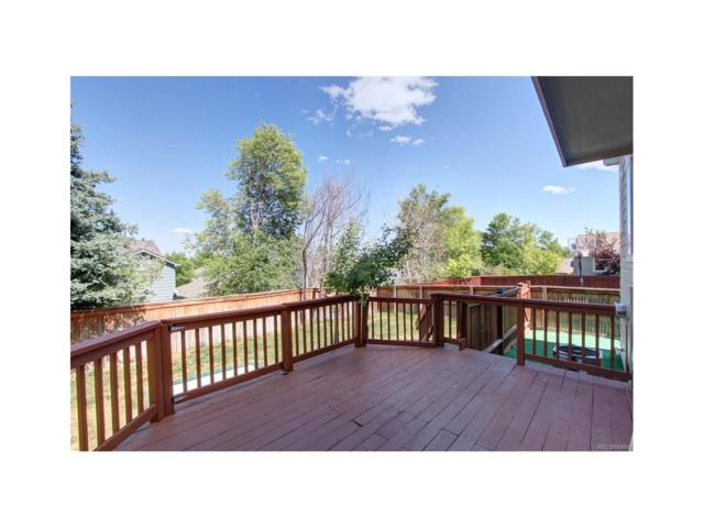 9682 Queenscliffe Drive, Highlands Ranch, CO 80130 (#7519001) :: The Peak Properties Group