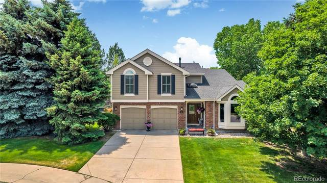 230 Corby Court, Castle Pines, CO 80108 (MLS #7520592) :: Bliss Realty Group