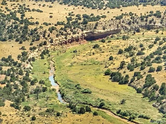Lot 80 Turkey Ridge Ranch, Walsenburg, CO 81089 (#7520679) :: The Gilbert Group