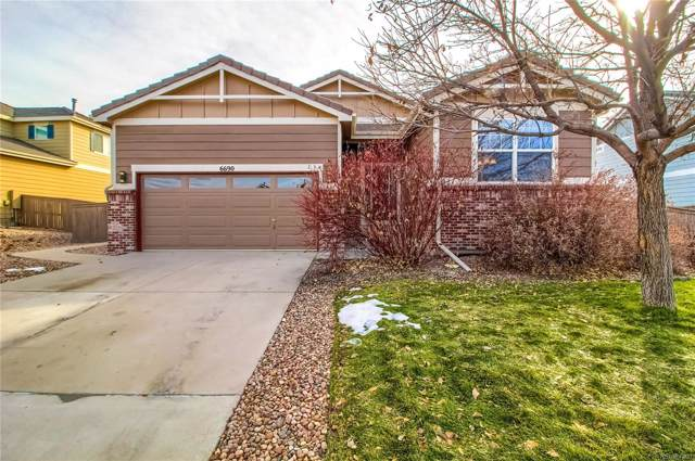 6690 Halifax Avenue, Castle Rock, CO 80104 (#7521224) :: Wisdom Real Estate