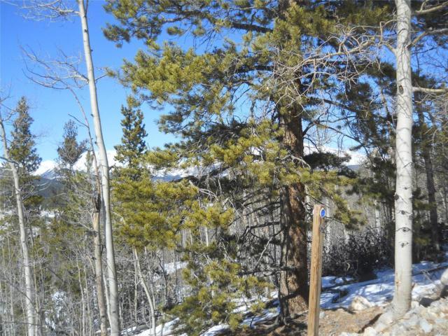 699 Platte River Drive, Fairplay, CO 80440 (#7525185) :: Wisdom Real Estate