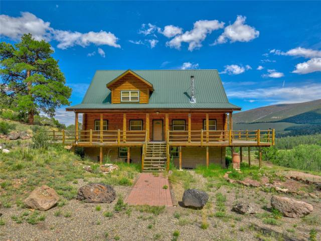 12005 County Road 28, Monte Vista, CO 81144 (MLS #7530365) :: 8z Real Estate