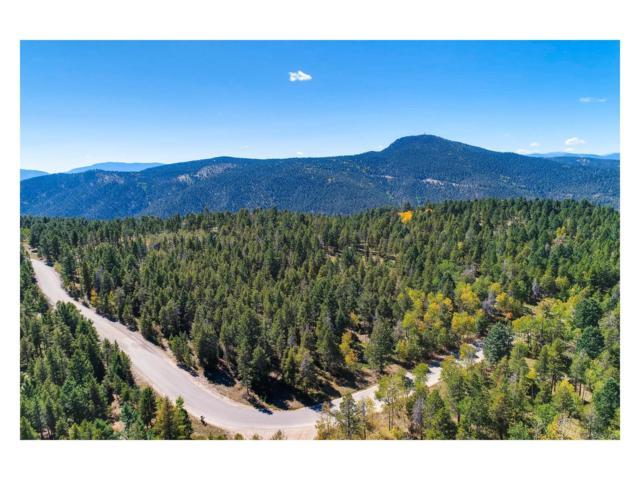 12171 S Ridge Road, Conifer, CO 80433 (MLS #7531254) :: 8z Real Estate