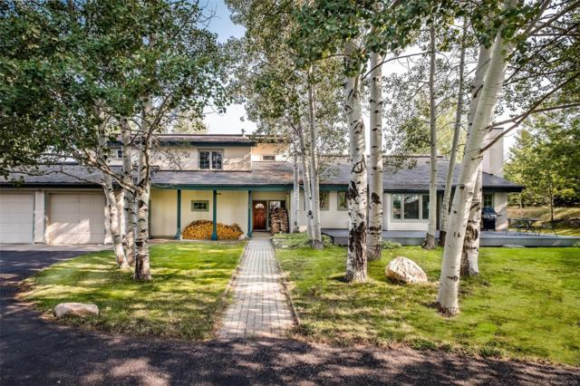 880 Spring Hill Road, Steamboat Springs, CO 80487 (#7539619) :: The DeGrood Team