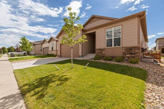 1115 102nd Avenue, Greeley, CO 80634 (#7539741) :: The DeGrood Team