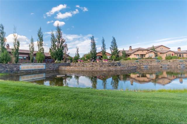 13135 Thumbprint Court, Colorado Springs, CO 80921 (MLS #7544599) :: 8z Real Estate