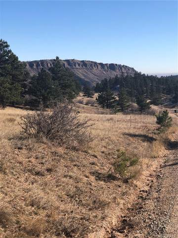 849 Blue Mountain Trail, Lyons, CO 80540 (MLS #7545234) :: Bliss Realty Group