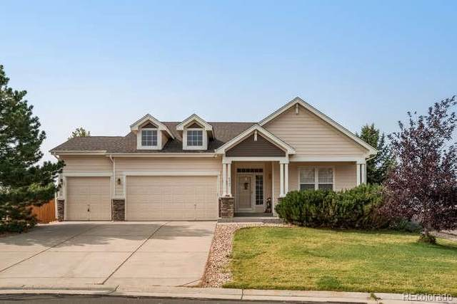 4387 Cameo Lane, Castle Rock, CO 80104 (#7549138) :: Colorado Home Finder Realty