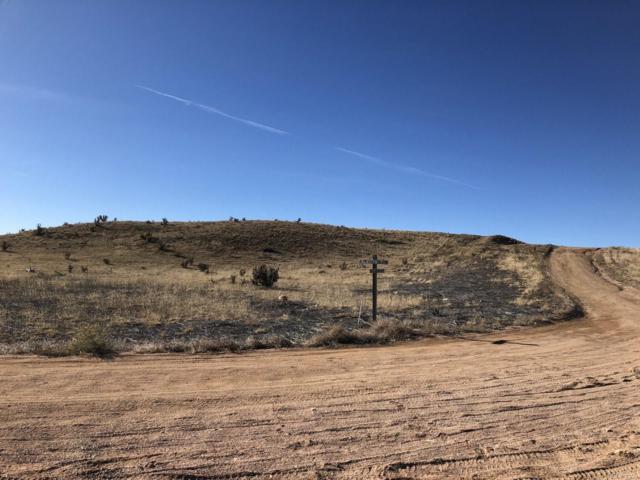 6825 Lakota Point, Fountain, CO 80817 (#7552026) :: Wisdom Real Estate