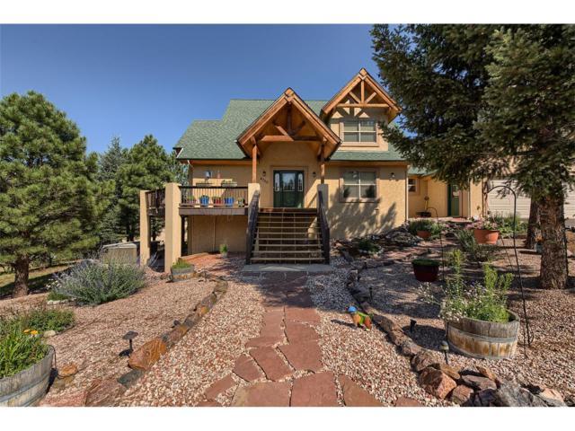 4755 Delaware Drive, Larkspur, CO 80118 (MLS #7554938) :: 8z Real Estate
