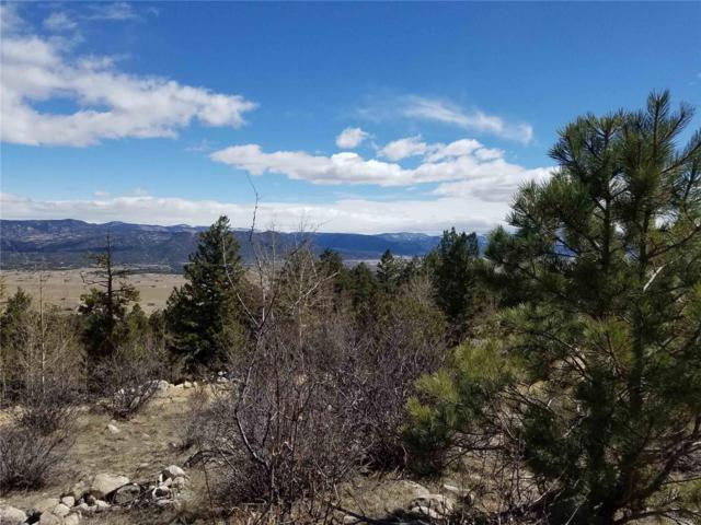 30175 Mountaintop Drive, Buena Vista, CO 81211 (#7556912) :: Wisdom Real Estate