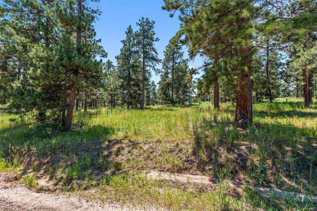 8177 Centaur Drive, Evergreen, CO 80439 (MLS #7557771) :: 8z Real Estate