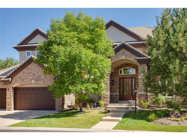 9530 S Shadow Hill Circle, Lone Tree, CO 80124 (#7564061) :: The Peak Properties Group