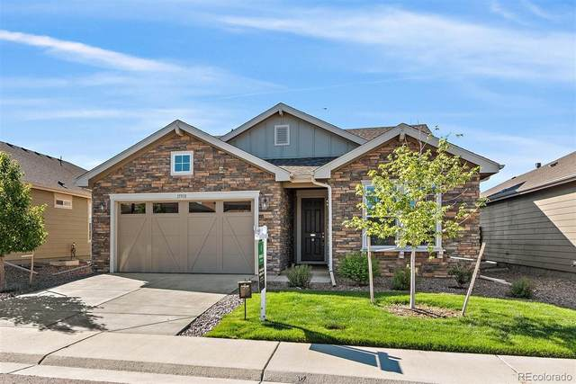 15918 St Paul Street, Thornton, CO 80602 (#7566433) :: Re/Max Structure