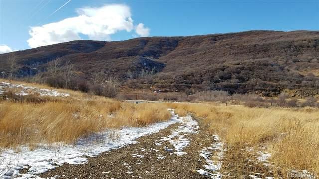 26000 Old Springs Road, Oak Creek, CO 80467 (#7566975) :: Arnie Stein Team | RE/MAX Masters Millennium