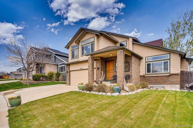 6550 S Simms Way, Littleton, CO 80127 (#7569403) :: Bring Home Denver with Keller Williams Downtown Realty LLC