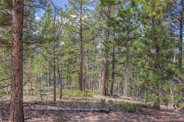 97 Needle Creek Road, Divide, CO 80814 (#7572885) :: Chateaux Realty Group