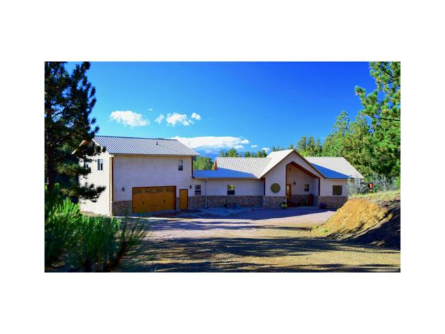 284 Escondido Lane, Cotopaxi, CO 81223 (#7574967) :: Compass Colorado Realty