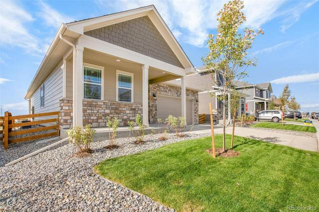 22561 E Radcliff Drive, Aurora, CO 80015 (MLS #7575324) :: 8z Real Estate
