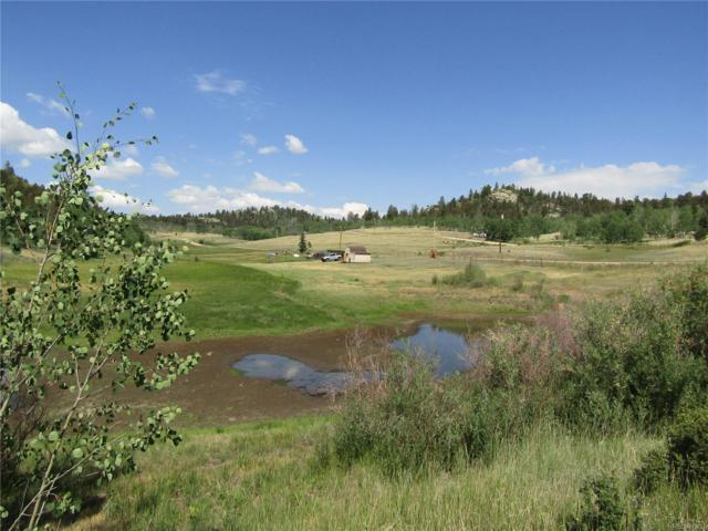 964 Hidden Valley Drive, Florissant, CO 80816 (#7581195) :: Mile High Luxury Real Estate
