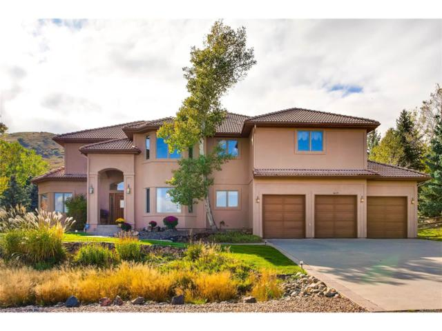 16119 Mountain Bluebird Way, Morrison, CO 80465 (#7581288) :: The Sold By Simmons Team