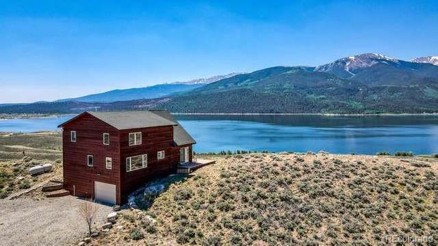 464 Mount Hope Drive, Twin Lakes, CO 81251 (#7584115) :: The Colorado Foothills Team | Berkshire Hathaway Elevated Living Real Estate