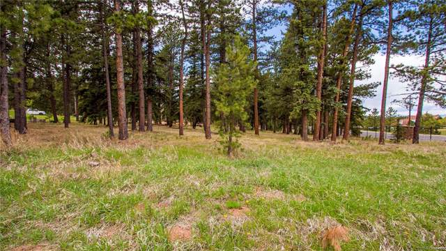 650 Chipmunk Drive, Woodland Park, CO 80863 (MLS #7588279) :: Keller Williams Realty