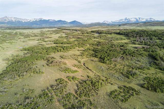 2920 County Road X48, Telluride, CO 81435 (#7588447) :: HomeSmart Realty Group