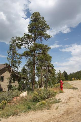 203 County Road 8980, Granby, CO 80446 (#7589637) :: The DeGrood Team