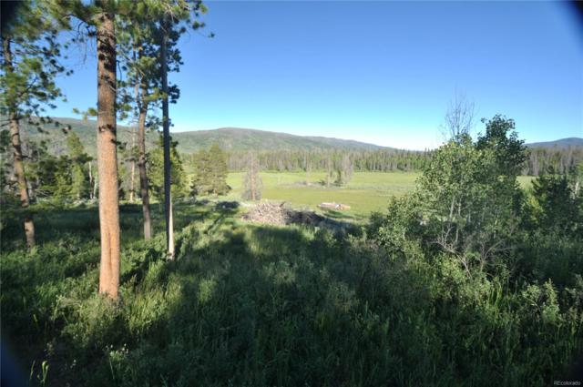 20865 E Filly Trail, Oak Creek, CO 80467 (MLS #7590153) :: 8z Real Estate