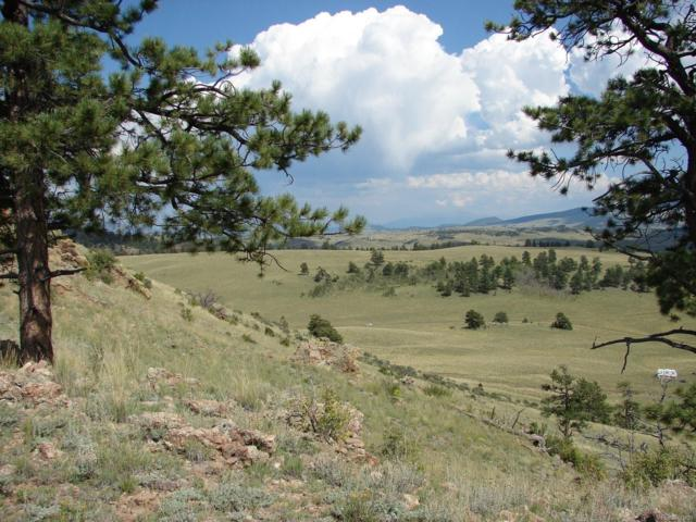 000 Crazy Horse Trail, Hartsel, CO 80449 (#7590260) :: Bring Home Denver