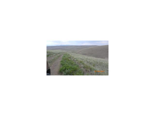 000 Jicarilla Trail, Hartsel, CO 80449 (MLS #7590490) :: 8z Real Estate