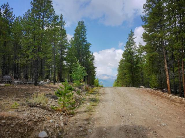 388 Mt Massive Drive, Twin Lakes, CO 81251 (#7596846) :: The DeGrood Team