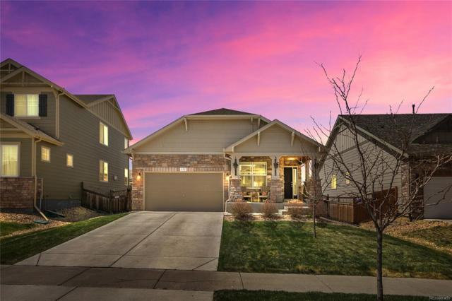 151 Gold Maple Street, Brighton, CO 80601 (#7597457) :: The Pete Cook Home Group