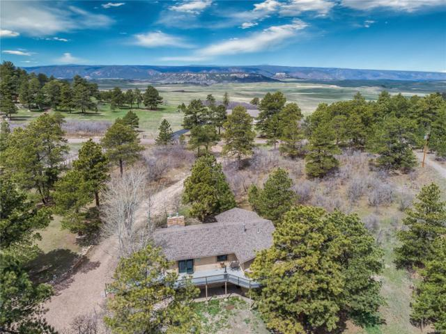 14190 True Mountain Drive, Larkspur, CO 80118 (#7598277) :: Colorado Team Real Estate