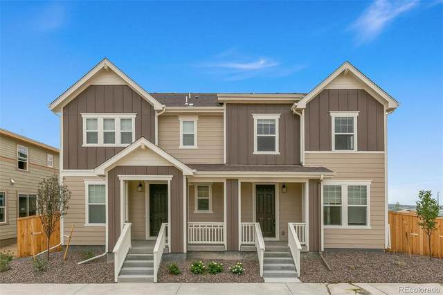 14117 Rock Daisy Street, Parker, CO 80134 (#7604956) :: Kimberly Austin Properties