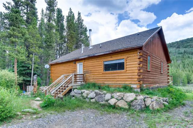 956 Silver Creek Road, Idaho Springs, CO 80452 (#7610098) :: The Healey Group