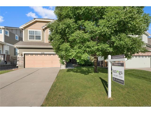 4236 Miners Candle Place, Castle Rock, CO 80109 (#7612958) :: The Griffith Home Team